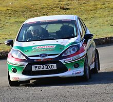 Race2Recovery Ford Fiesta by Willie Jackson