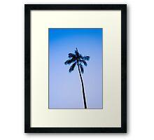 palm tree ver.blue Framed Print