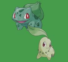 Bulbasaur and Chikorita by Stephen Dwyer