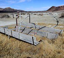 Old Covered Wagon,Black Rock Desert,near Gerlach,Nevada USA 2 by Anthony & Nancy  Leake