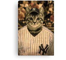 Baseball cat (2) Canvas Print