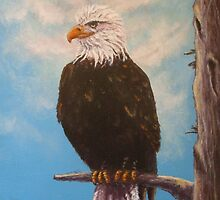 Vigilant Eagle by Dan Wagner