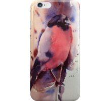 Mr Bullfinch iPhone & IPod case  iPhone Case/Skin
