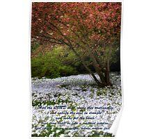 Spring Bushes Bloom Poster