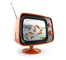 GOLD FISH TV Photographic Print