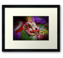 Lord Ganesh Framed Print
