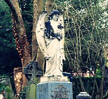 The highgate cemetary. by amylauroo