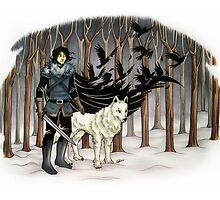 The Crow and the Wolf by marin5