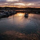 Torquay Marina by Ann Garrett