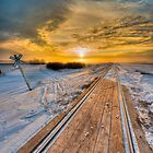 Beauty At The Tracks 0259 by Ian McGregor
