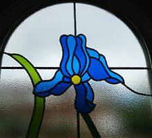 Funky Blue Flower by MidnightMelody