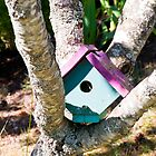 Birdhouse by Jaime Pharr