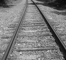 Tracks by ClayBearStudio