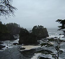 Neah Bay by remiliej