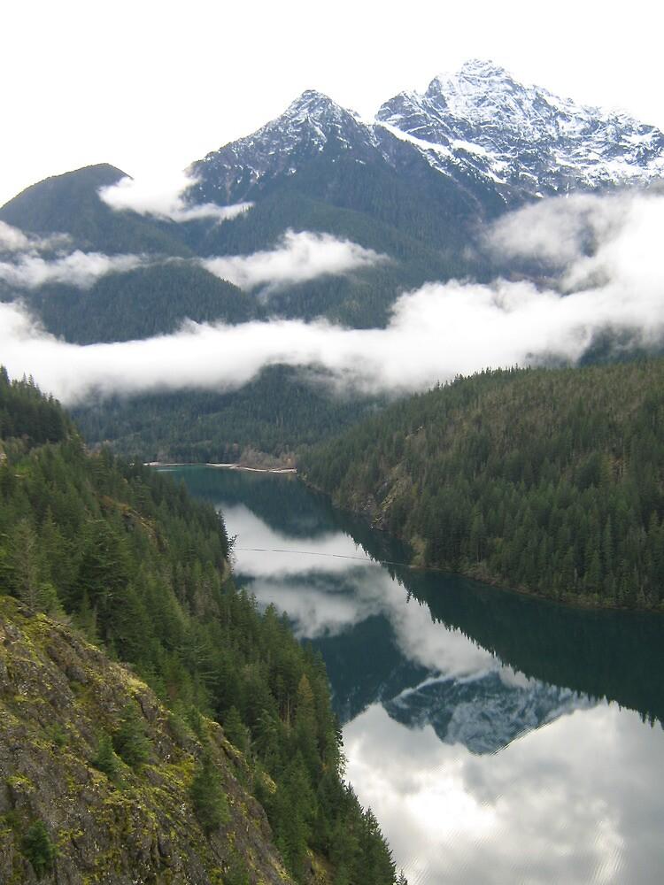 Washington Mountains by remiliej