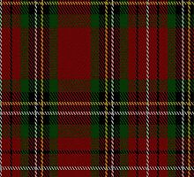 02231 Caper,  Caper, (Unidentified #53) Fashion Tartan Fabric Print Iphone Case by Detnecs2013