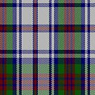 02234 Robe of Cedar, (Unidentified #56) Fashion Tartan Fabric Print Iphone Case by Detnecs2013