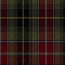 02241 Inncloness (Unidentified #63) Fashion Tartan Fabric Print Iphone Case by Detnecs2013