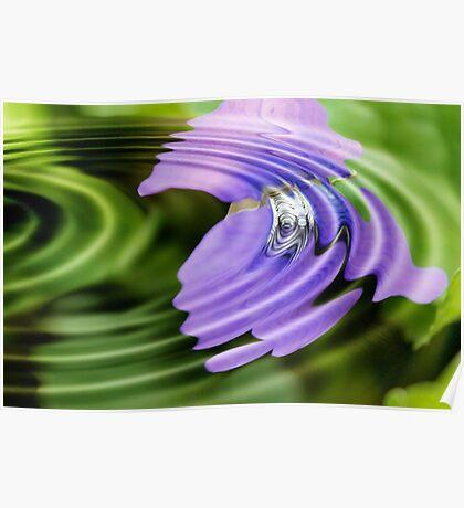 Violet Garden Flower Ripple Poster