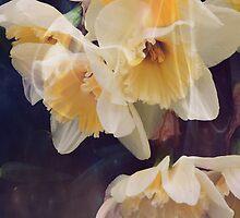 Dusky Yellows by ACampbell