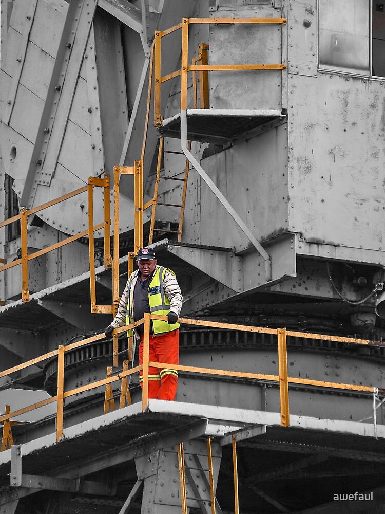 The crane operator by awefaul