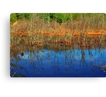 Swamp Colors Canvas Print
