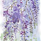 The Wisteria&#x27;s scent by Maree Clarkson