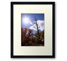 picture book fall III - Dead Tree Framed Print