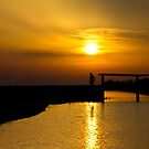 Sunset in Camargue by Marie Moriscot
