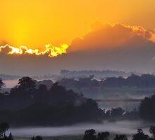 Misty by Liz Worth