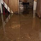 Flooded Basement Jacksonville by addieturner62