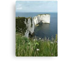 Old Harry Canvas Print