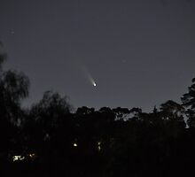 Comet PANSTARRS over Upper Ferntree Gully by Chris Samuel
