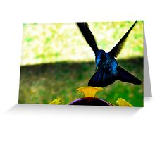 Sparkling Violetear in Watercolor Greeting Card