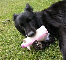 TATTY & PIG by BIG-DAVE