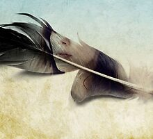 Memory of a quill by Vin  Zzep