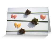 Shells and Juncus Flowers Greeting Card
