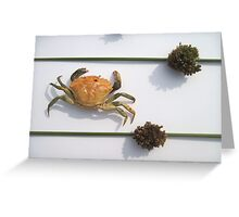 Crab and Juncus Flowers Greeting Card