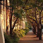 wood street by oliversutton