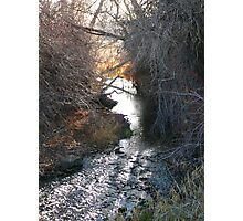 Stick Creek Reflections Photographic Print