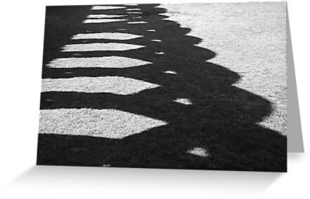 Shadows by ZASPHOTOS