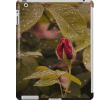 A red rose in the rain iPad Case/Skin