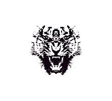 Black and White Abstract Jagged Angry Tiger Photographic Print
