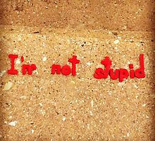 I'm Not Stupid by dougshaw