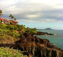 Hawaiian Paradise by Buckeyefiveo