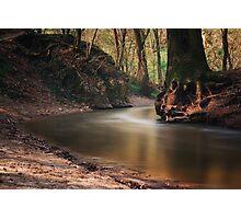 Gaja Creek 2 Photographic Print