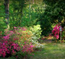 Neighbors Garden by Ginger  Barritt