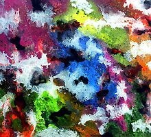 Colors in Motion 4 by Tina Vaughn