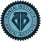 Buckaroo Banzai Institute Gear Logo by Hedrin