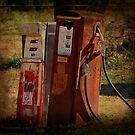 Got Gas? by Ginger  Barritt
